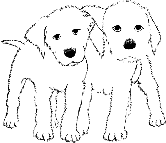 drawing of 2 dogs